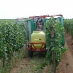 Das Bild zeigt die das Versprühen von einem Ackergift in einem Weingarten.