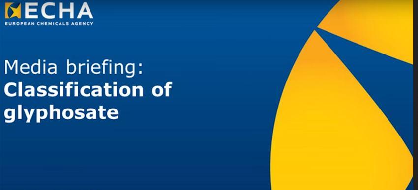 Ankündigung der Pressekonferenz zur Bewertung von Glyphosat durch die Europäische Chemikalienbehörde ECHA.
