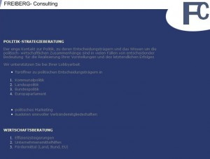 Screenshot freiberg-consulting.de